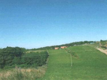 Działka Łęcze