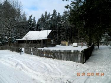 Dom Walne