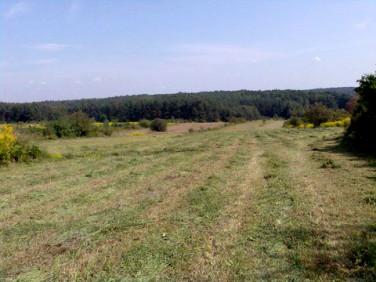 Działka rolna Jaworzno
