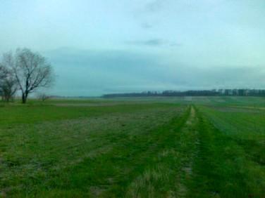 Działka budowlano-rolna Jędrzejów