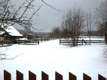 Działka rolna Orzeszkowo