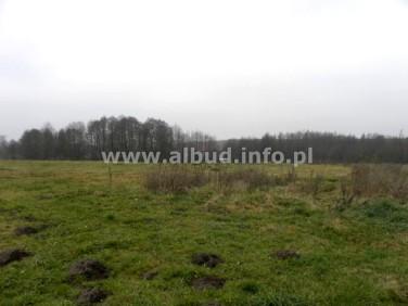 Działka rewal - działka siedliskowa 12 kilometrów od rewala