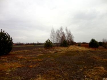 Działka rolna Czernica