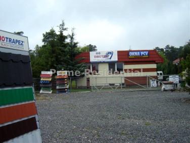 Lokal Poddębice
