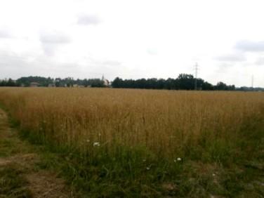 Działka rolna Jastrzębie-Zdrój