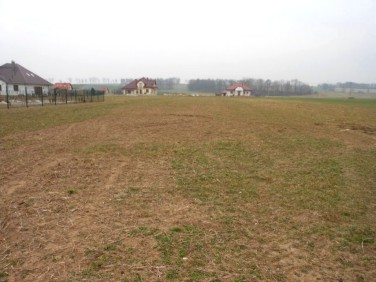 Działka budowlana Prostynia