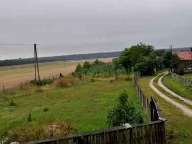 Działka rolna Wilczkowo