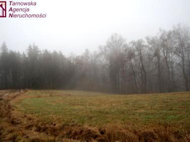 Działka Jodłówka Tuchowska