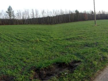 Działka rolna Ceków