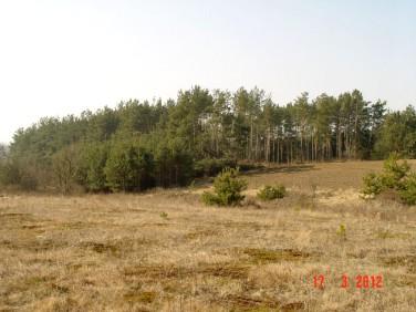 Działka budowlano-rolna Stara Łomża przy Szosie