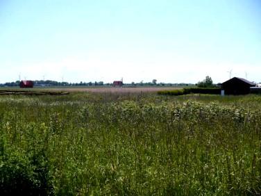 Działka rolna Kładno