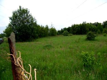 Działka rolna Niekłonice