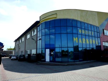Lokal Witkowo