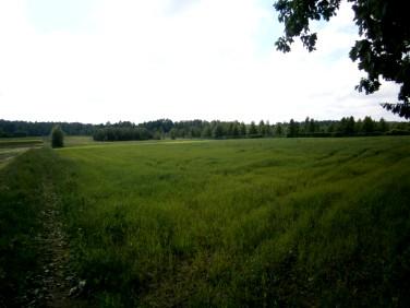 Działka rolna Skomętno Wielkie