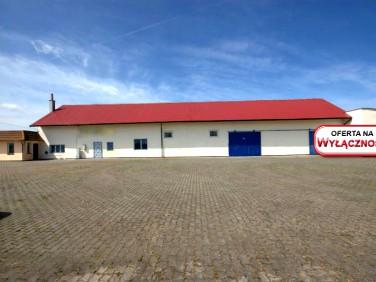 Budynek użytkowy Wrzosowo