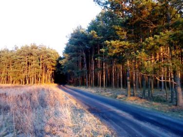 Działka budowlano-rolna Czarne Błoto