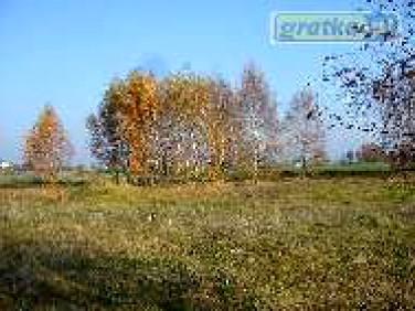 Działka budowlano-rolna Steklin