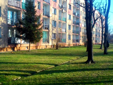 Mieszkanie Oświęcim