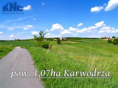 Działka Karwodrza